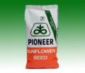 PIONEER P64LE20